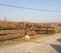 怀化重庆木方加工厂
